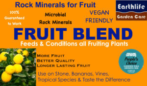 FRUIT BLEND 4KGS EAR