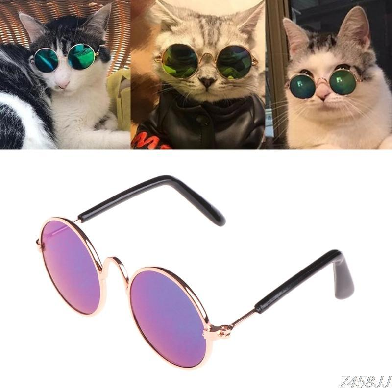 Pet Sunglass