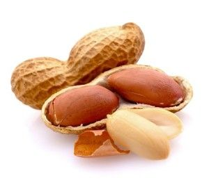 Allergic to peanuts? Help is on the way!