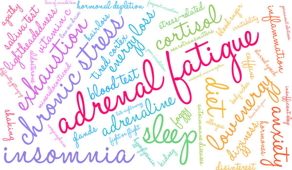 Adrenal Glands: What They Are & How to Care for Them