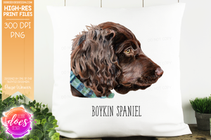 Boykin Spaniel - Hand Drawn Dog Illustration - Sublimation/Printable Design