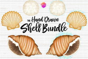 Hand Drawn Shell Bundle - Includes 6 files! - Sublimation/Printable Design
