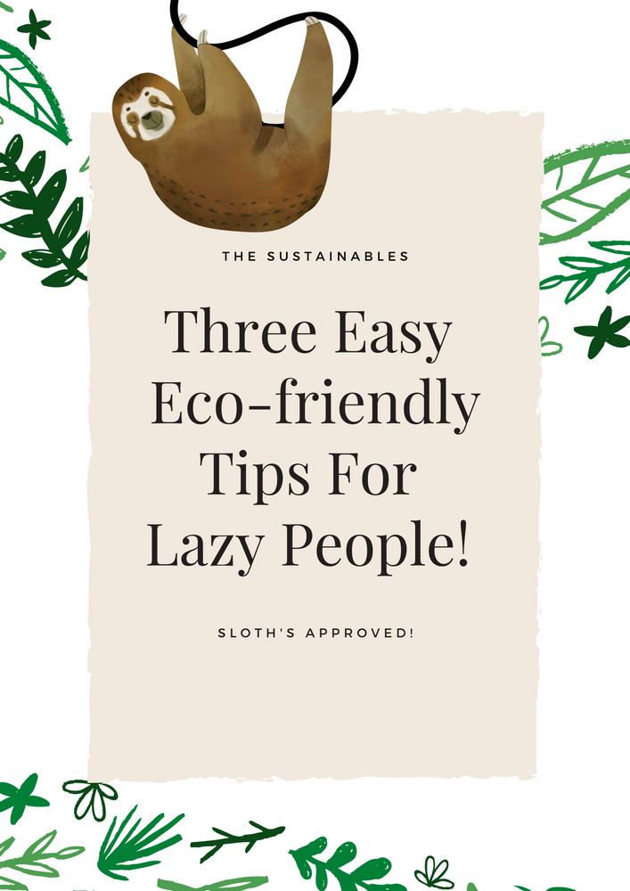 Three Easy Eco-friendly Tips For Lazy People!