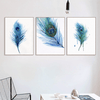 Peacock Feather Canvas