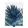 Exotic Leaves Canvas
