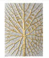 Golden Branches Canvas