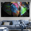 Elephant in Color Canvas