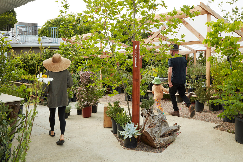 Plant Material, a 'punk rock plant shop,' opens in Glassell Park
