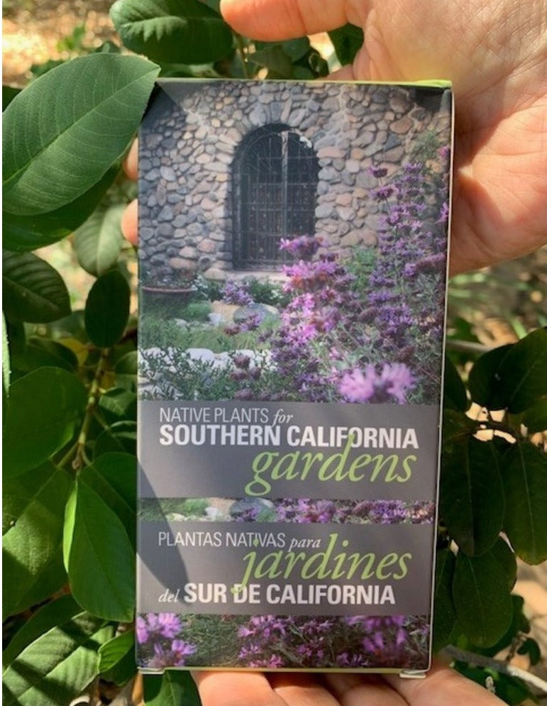 Native Plants For Southern California Gardens Flashcards Plant