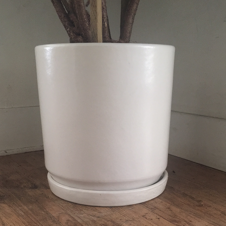 "15"" Deep cylinder Matte White Pot"