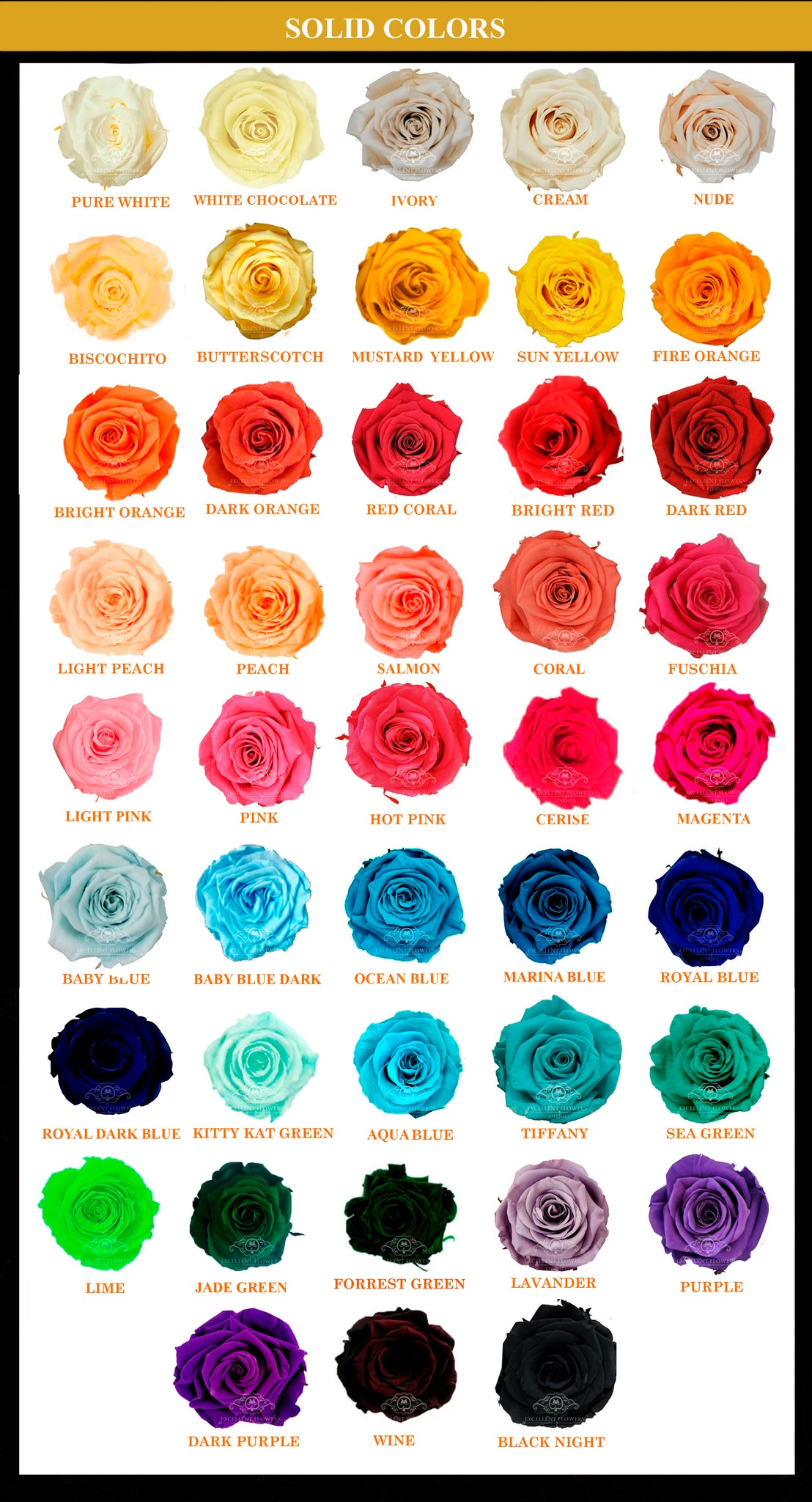 Catalogue preserved roses