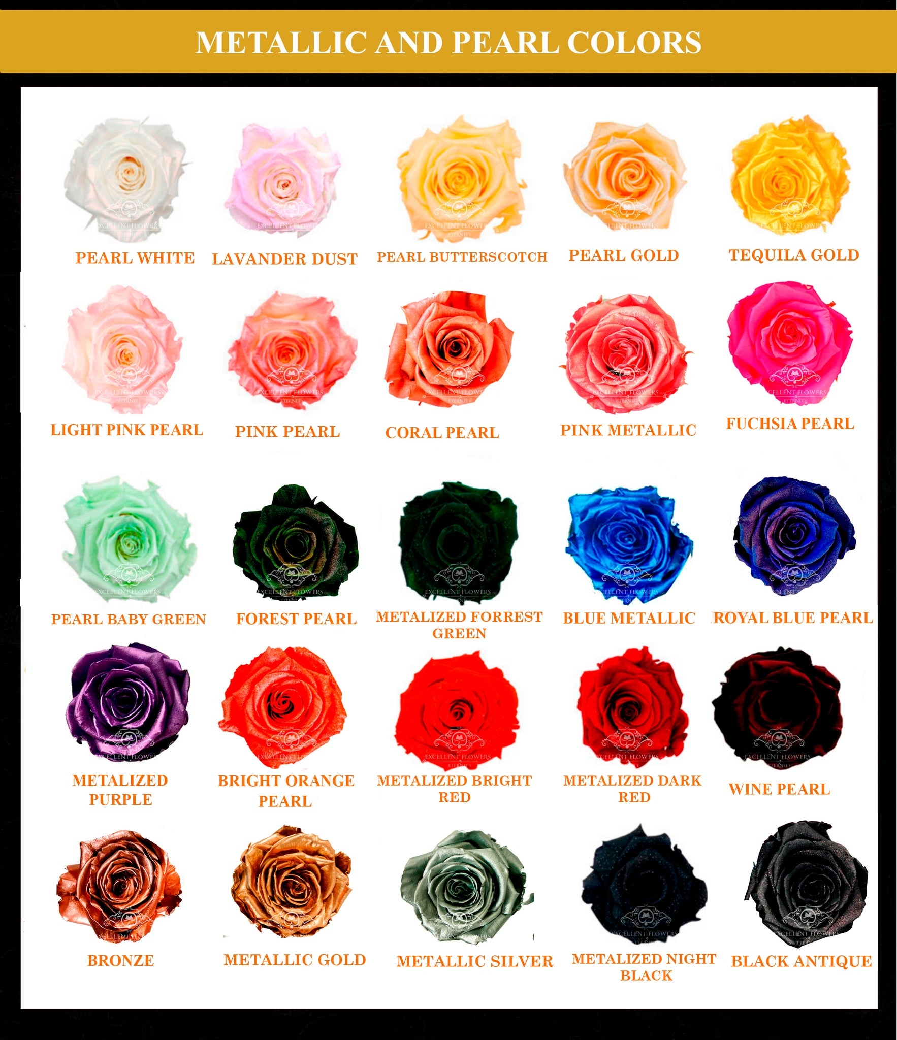 Catalogue preserved metallized roses