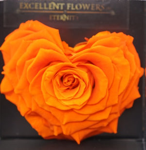 Heart rose: Orange Heart Shape Jumbo