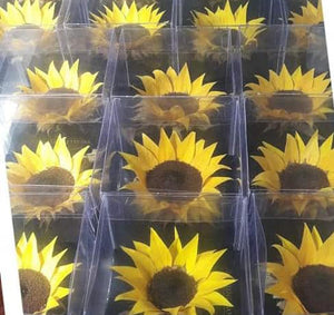 Sunflower: Sunflower Medium Size