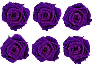 Large: Dark Purple Preserved Rose *Box of 6 Preserved Rose Heads