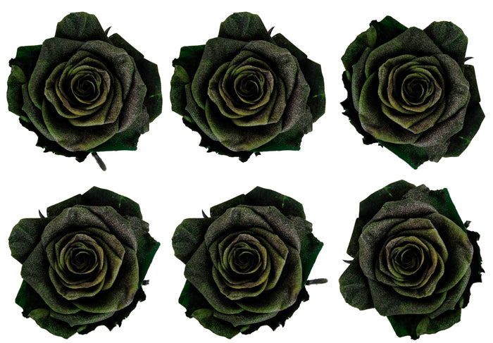 Large: Forest Pearl Preserved Rose *Box of 6 Preserved Rose Heads