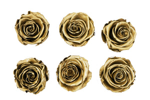 Medium golden roses