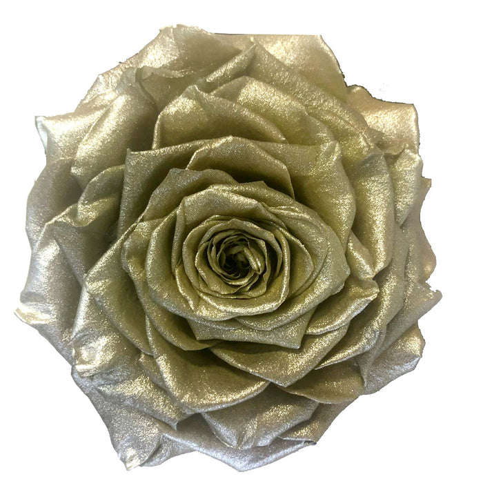 Jumbo rose: Metallic Pearl Chocolate Silver Jumbo Rose