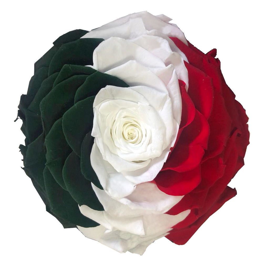 Jumbo rose: Mexico Tricolor Preserved Flag Rose
