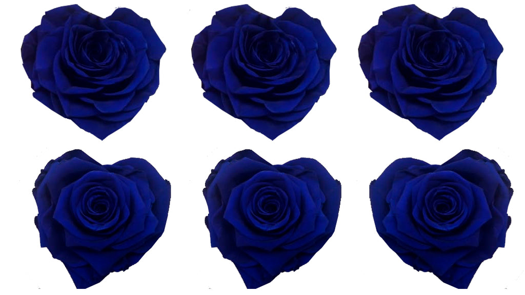 Large Heart: Royal Blue Heart Shape  Preserved Rose *Box of 6 Preserved Rose Heart Heads