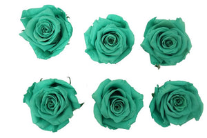 Large: Sea Green Preserved Rose L * Box of 6 Preserved Rose Heads