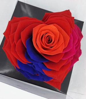 Heart rose: Heart Shape Jumbo Tricolor 001