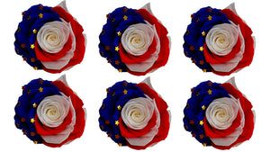 Medium: USA Flag  Preserved Rose * Box of 6 Preserved Rose Heads
