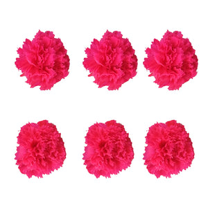 Carnations: Fuchsia Preserved Carnation * Box of 6 Preserved Carnation Heads