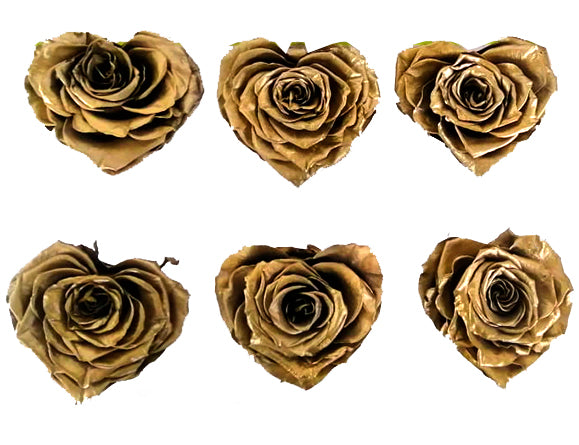 Large Heart: Golden Heart Shape  Preserved Rose *Box of 6 Preserved Rose Heart Heads