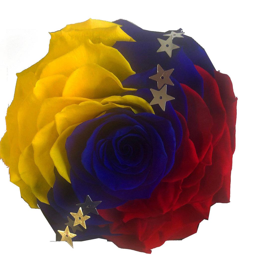 Jumbo rose: Venezuela Preserved Flag Rose