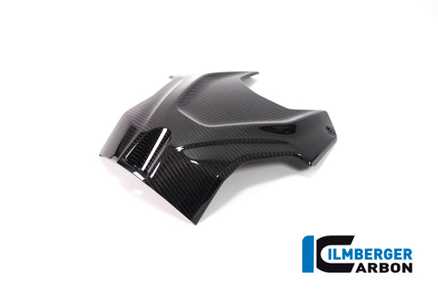 products/BMW_S1000RR_ab2019_Ilmberger_Carbon_TAO_011_S119S_K_1.jpg