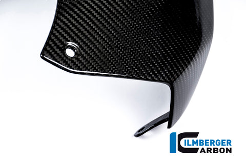 products/BMW_s1000r_carbon_tao2_1.jpg