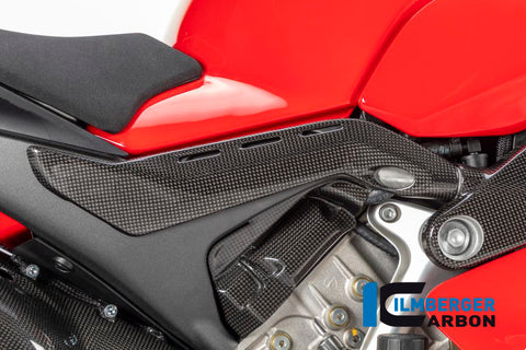 products/Ducati_Panigale_V4_Carbon_Ilmberger_13_3.jpg