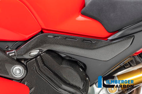 products/Ducati_Panigale_V4_Carbon_Ilmberger_20_3.jpg