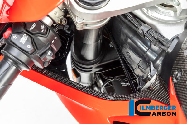 ILMBERGER LEFT AIR TUBE COVER (GLOSS) FOR DUCATI PANIGALE V4/V4S