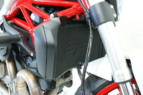 products/Evotech-Ducati-Monster-821-Radiator-Guard-PRN011674-01_large_c726d4e1-4e17-4d14-90cf-425c238f10b4.jpg