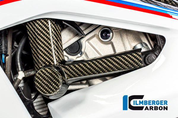 Ilmberger-Carbon Fiber Left Crashpade for BMW S1000RR 2017-2018