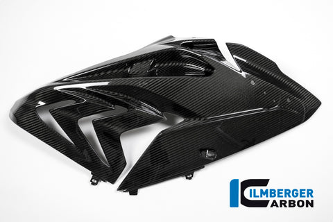products/bmw_s1000rr15_carbon_vsrestr_1.JPG