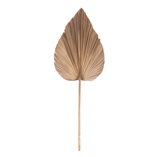 Natural Palm Leaf Decor