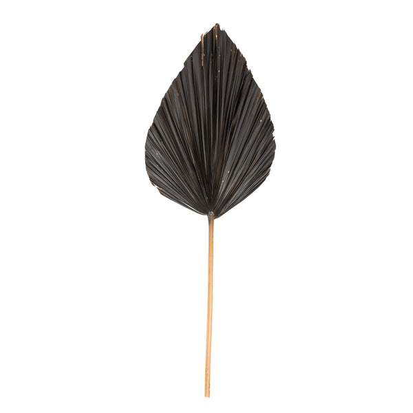 Black Palm Leaf Decor