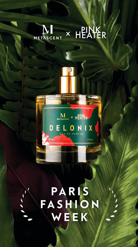 Falls Paris Fashion Week 2019: Delonix 29 September 2019