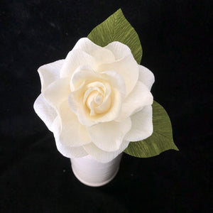 Gardenia  with leaves