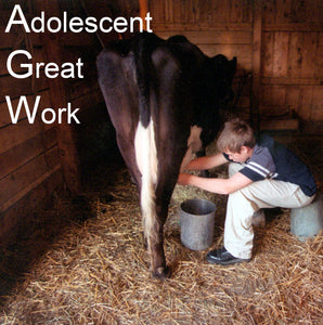 Adolescent Great Work