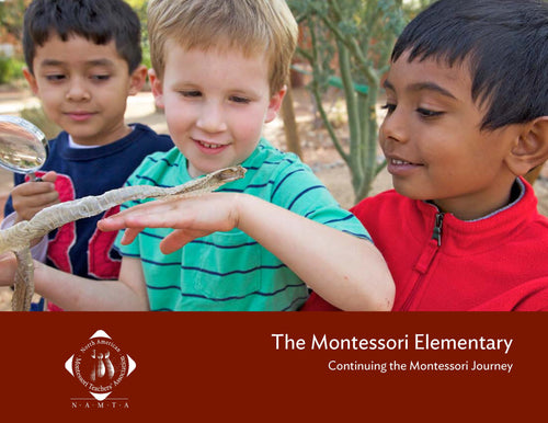 The Montessori Elementary: Continuing the Montessori Journey