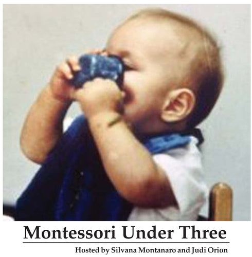 Montessori Under Three