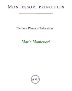 Four Planes of Education