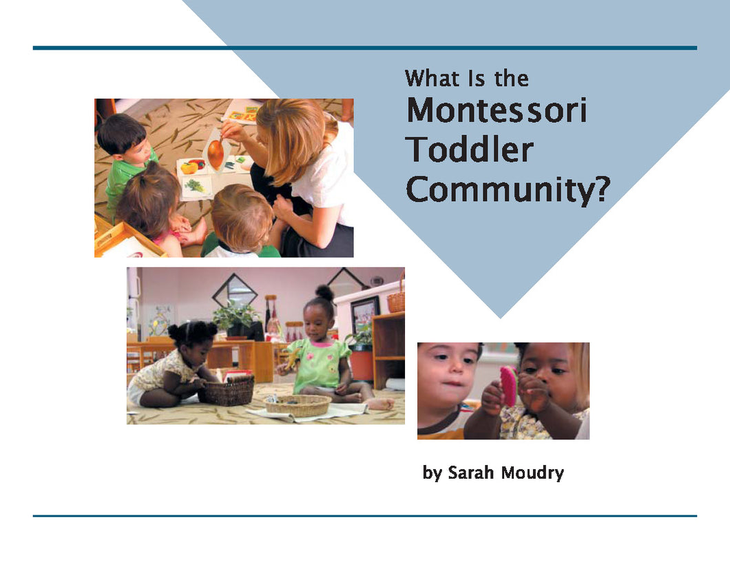 What is the Montessori Toddler - DVD