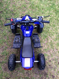 Quad Thumb Throttle + Speed Governor + Hand Brake Function - Pocketbike SA