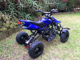 Quad Bike Rear Disc Cover - Pocketbike SA