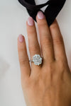 The Arielle Ring (3.55 Carat Center)
